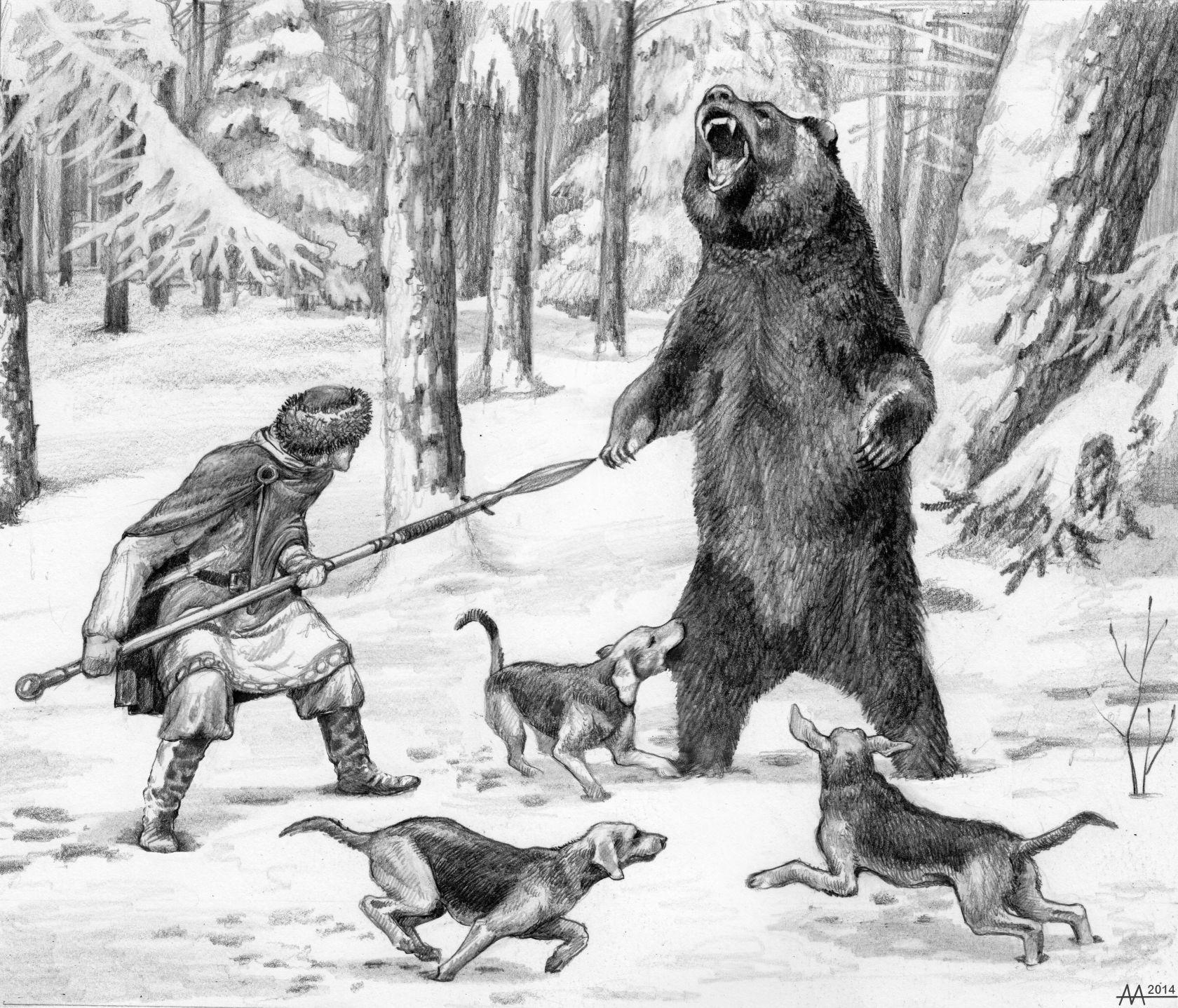 помнить, картинка охота на медведя с собаками вариантов
